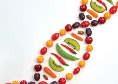DNA HEALTH,DIET, SPORT AND OESTROGEN | MUNCHWIZE DIETITIANS
